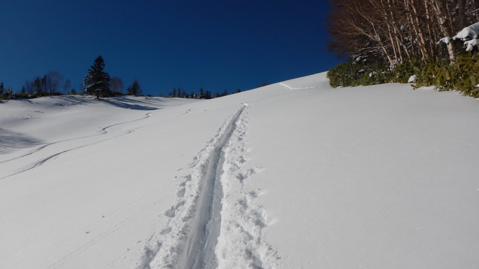 久しぶりの雪の中のハイクアップ